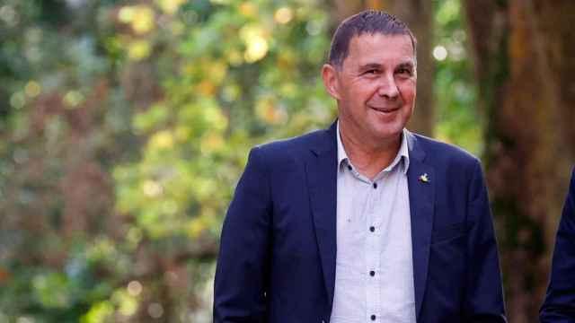 El coordinador de Bildu, Arnaldo Otegi, este lunes en el Palacio de Aiete.