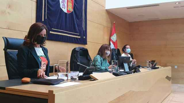 La consejera de Empleo e Industria, Ana Carlota Amigo, durante la presentación de la evaluación del Plan Director.