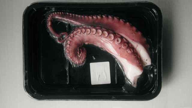 Tentáculos de pulpo cocidos y envasados.