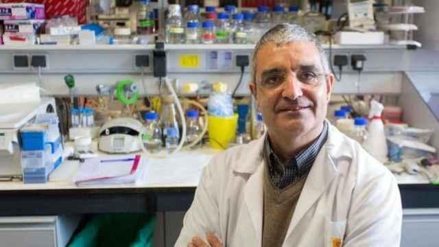 Xosé R. Bustelo, investigador del CIC de Salamanca