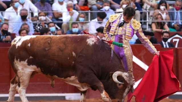 Alejandro Marcos torea a 'Gandillito', de la ganadería de Galache