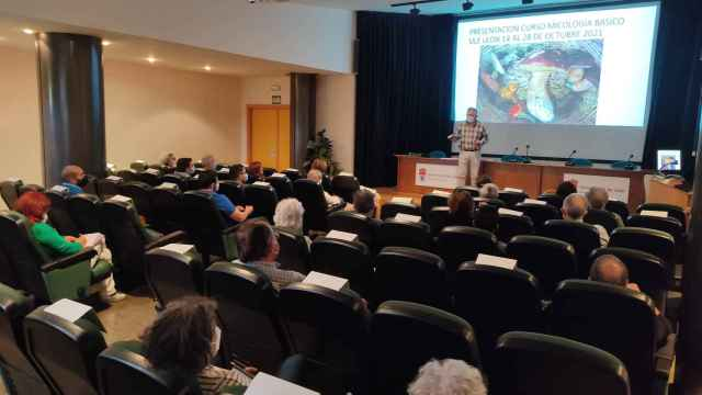 Curso de micología básico de la Universidad de León