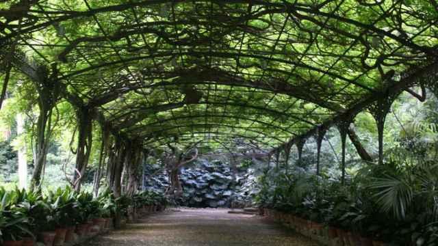 Uno de los escenarios del Jardín Botánico de la Concepción, en Málaga.