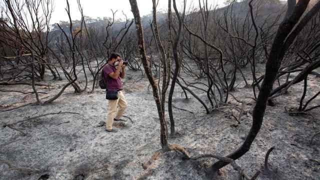 Imagen del incendio en Sierra Bermeja, en Málaga.