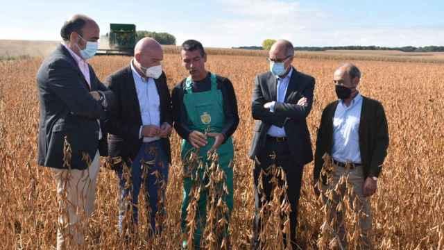 Visita a una plantación de soja en  Arabayona de Mógica (Salamanca)