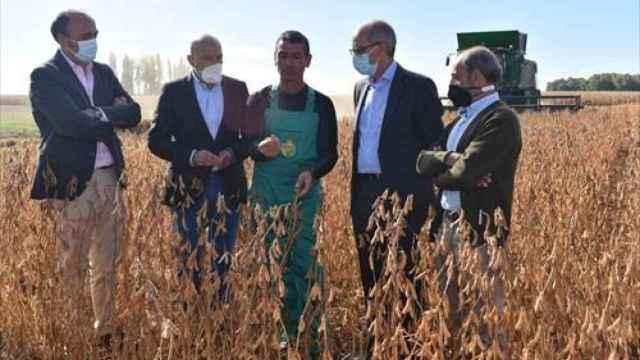 Carnero, acompañado por Javier Iglesias durante su visita a una plantación de Soja en Arabayona