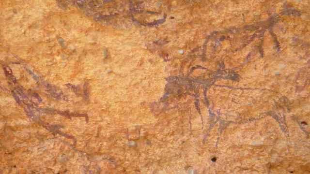 Una de las pinturas rupestres halladas en Minateda. Foto: Turismo Castilla-La Mancha