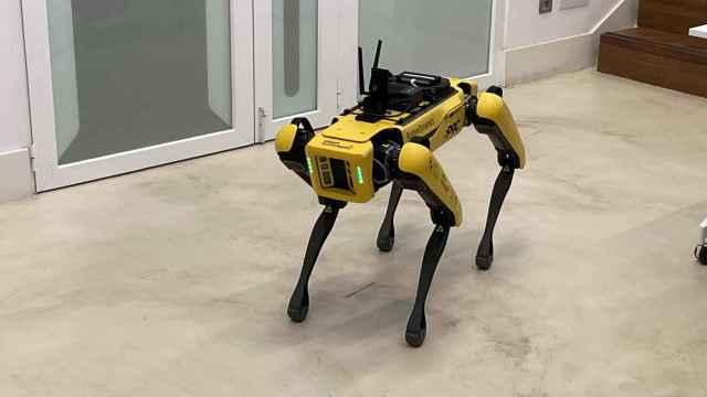 Spot, el perro robot de Boston Dynamics llega a Madrid.