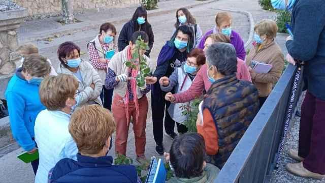 Amfar sigue impulsado la formación de la mujer rural en Castilla-La Mancha: todas las actividades
